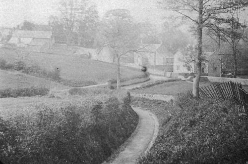 Trots Lane Shipton