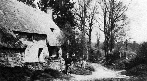 View down Green Lane, Fifield, 1900s