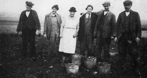 Potato pickers, Manor Farm, Upper Milton, 1940.